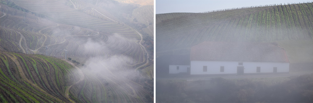 Douro-Valley-Collage-B-1000px