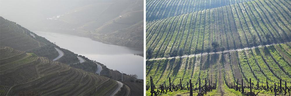 Douro-Valley-Collage-C-1000px