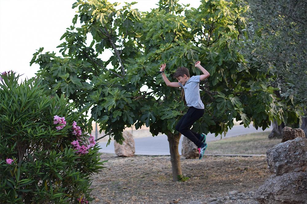Photo of a boy jumping off rocks in a garden in Mallorca Spain