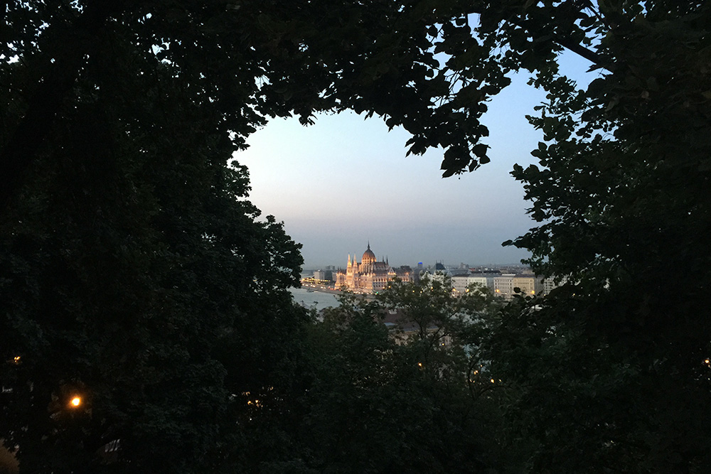 Photo of Budapest Hungary at night taken through the trees near the Royal Palace.