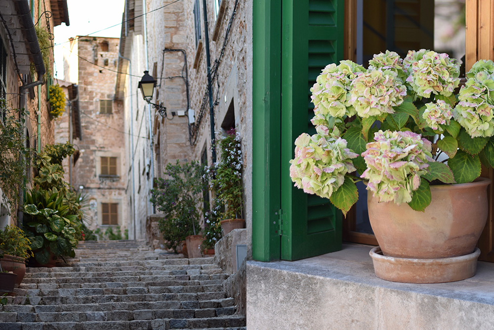 A photo of a village in Mallorca, Spain with a flowerpot of green and pink hydrangeas in the windowsill