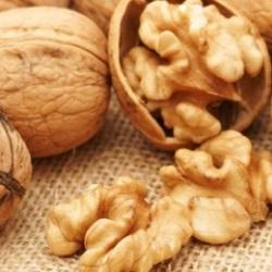 Грецкие орехи для кормящих мам: можно ли орехи при грудном вскармливании, сколько можно есть грецких орехов?