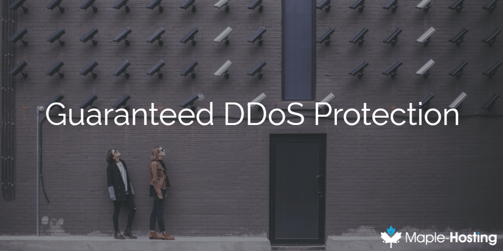 Guaranteed DDoS Protection