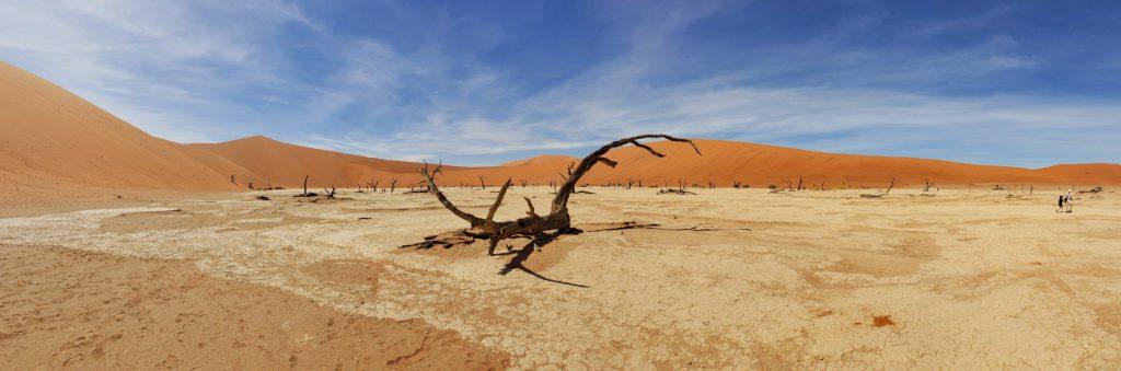 Namibian Road Trip Deadvlei