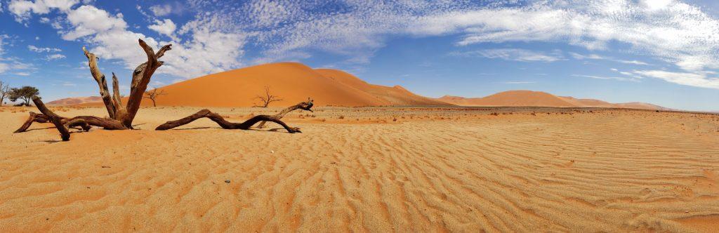 Namibian Road Trip Dune 45