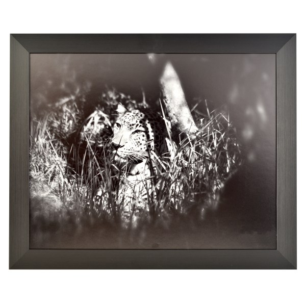 Freestyle black picture frame without mount
