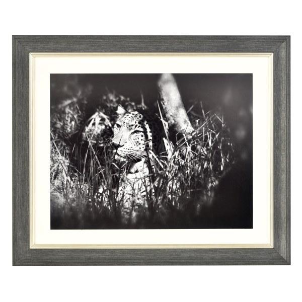 Fraya 46 dark grey and silver frame