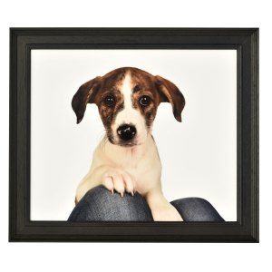 Fallon 30 Black frame without mount