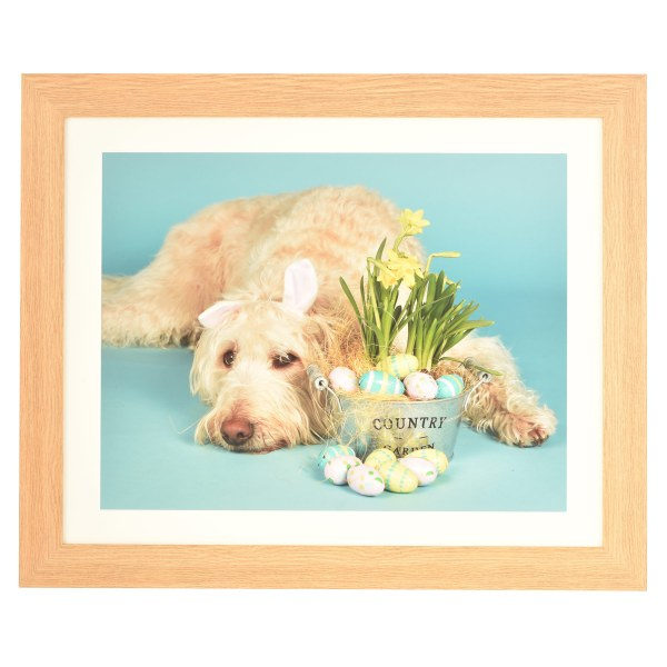 Freestyle light wood picture frame with mount