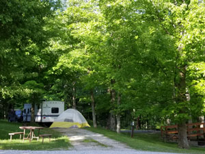 Maple Grove Campground camper and tent