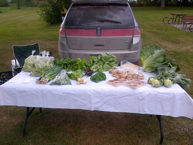 July 26th Market Stand