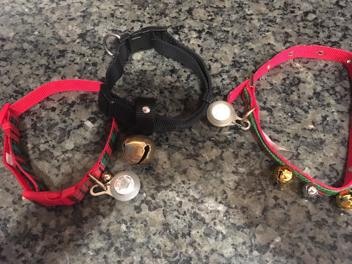3 dog collars each with bells on them on a granite counter top