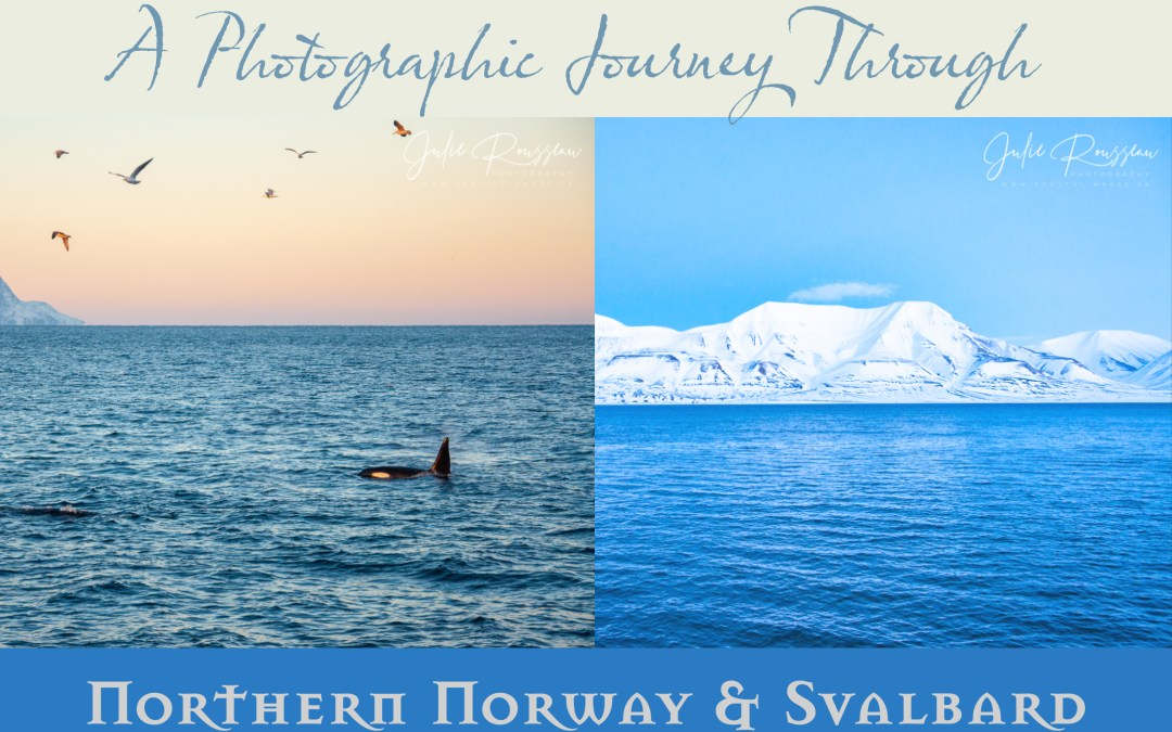 A Photographic Journey Through Northern Norway & Svalbard
