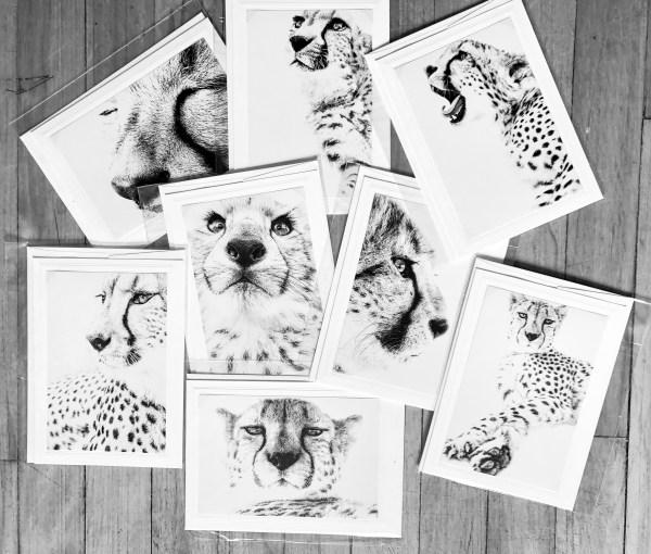 I am cheetah greeting cards