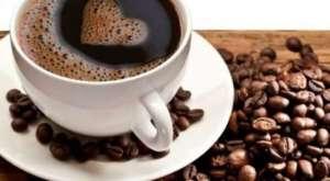 kafe-550x302