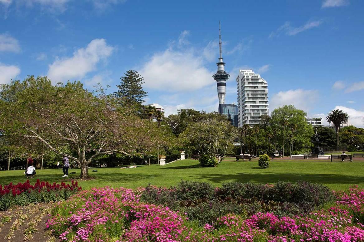 5°-Auckland-–-4154