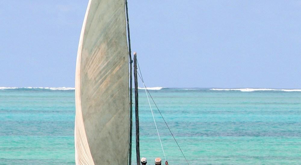 Travel report: swimming with wild dolphins on Zanzibar, Tanzania - Map of Joy