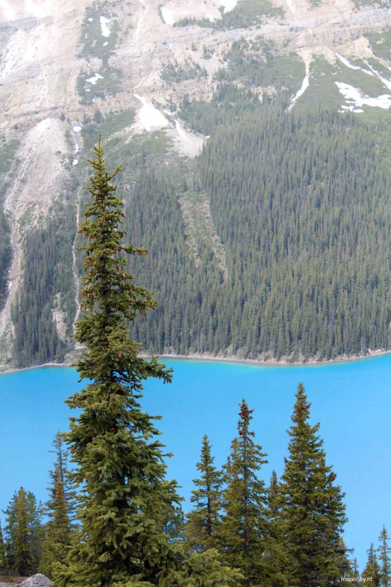 Peyto Lake, Alberta, Canada - Map of Joy