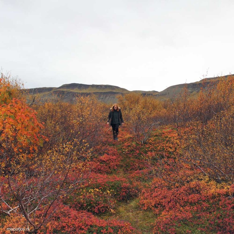 Autumn in Iceland - Map of Joy