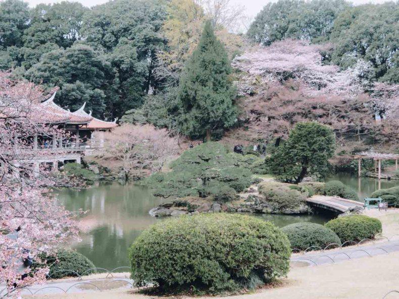 Shinjuku Gyoen National Garden, beste plek om kersenbloesems te zien in Tokio - Map of Joy