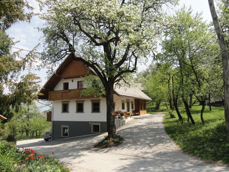 12x bijzondere accommodaties in Bled - Map of Joy