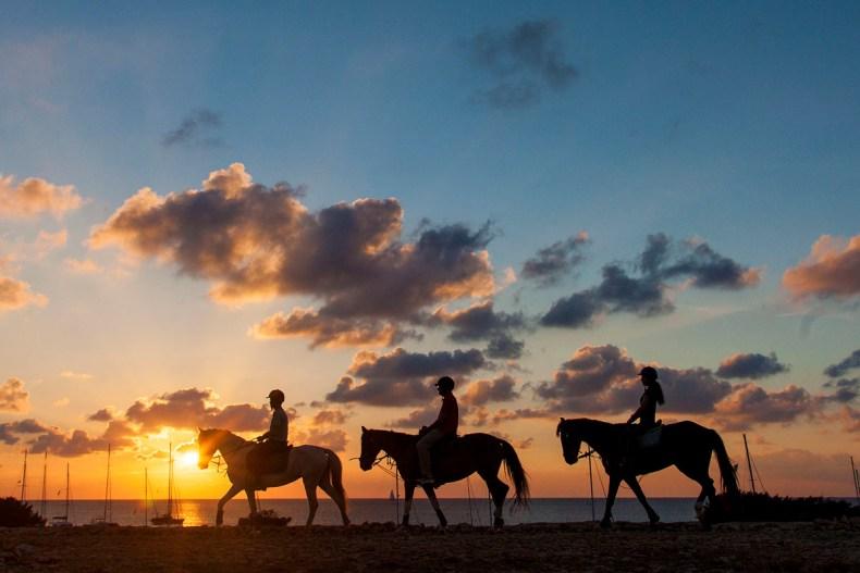 Paardrijden op Formentera