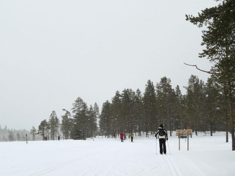 De leukste dingen om te doen in Värmland in de winter, langlaufen - Map of Joy