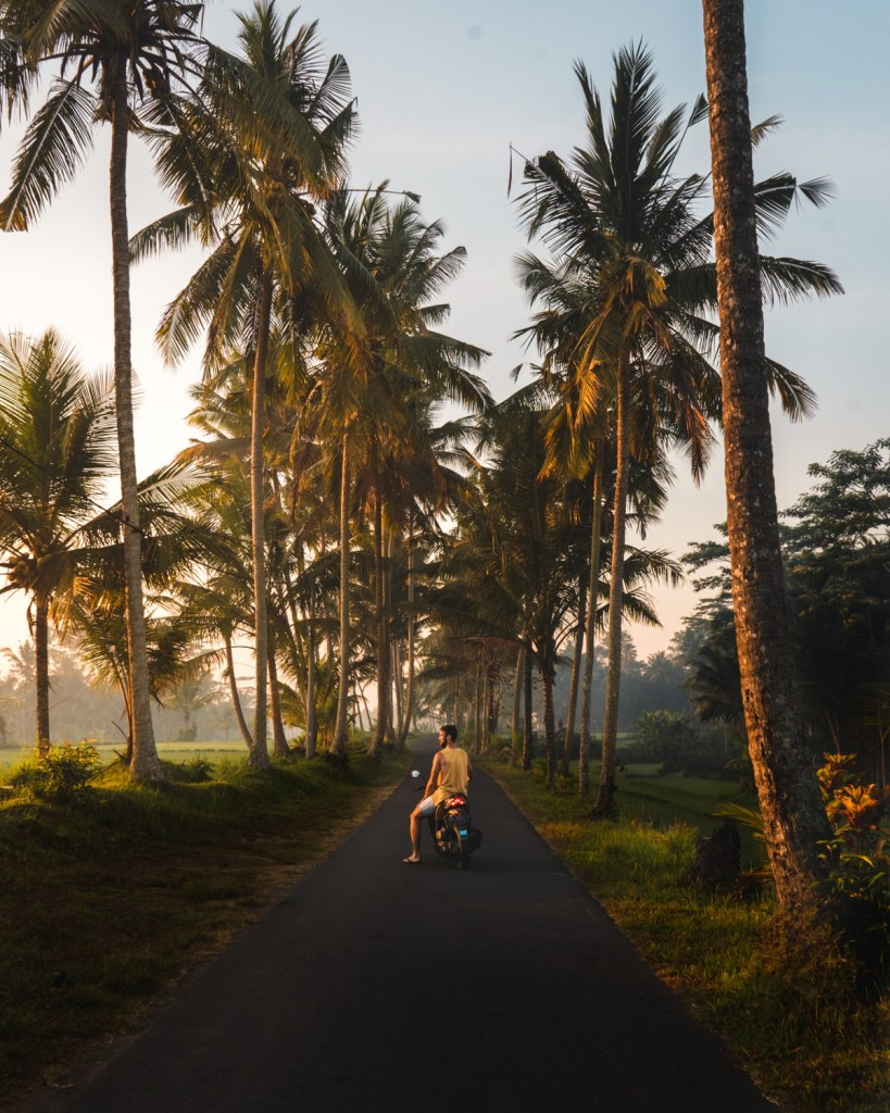 palm tree road leading to tibumana waterfall in bali