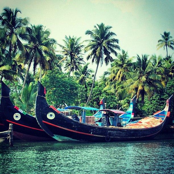 Love of photography: Beautiful backwaters of Kerala, India.