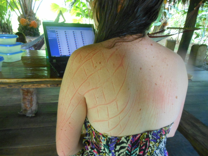 In the Costa Rican Jungle! ... I spent too much time in a Hammock hence the strange patterns on my back!