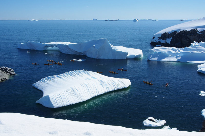 Kayakers in Antarctica.