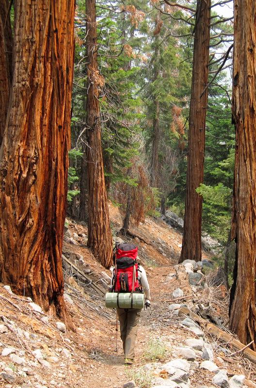 Hiking the High Sierra Trail.