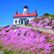 Snapshot From the Road: Battery Point. America's Most Picturesque Lighthouse.