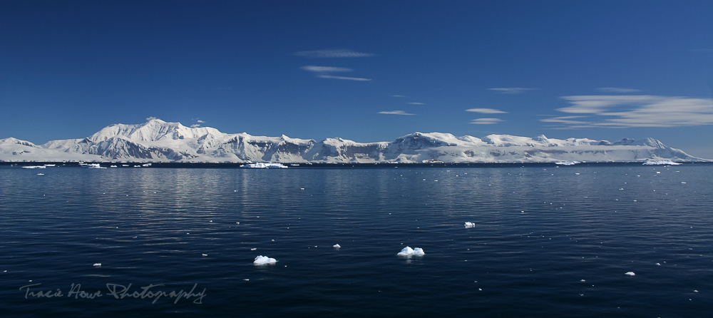 How to get a cruise ship job to Antarctica