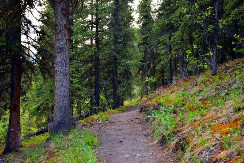 Triple Lakes Trail