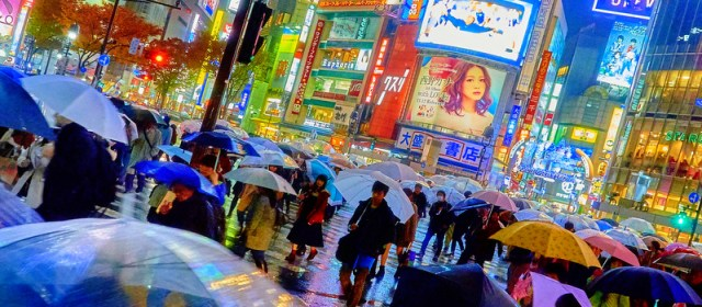When to Visit Tokyo: Reasons to Visit in Summer, Autumn, Winter, and Spring