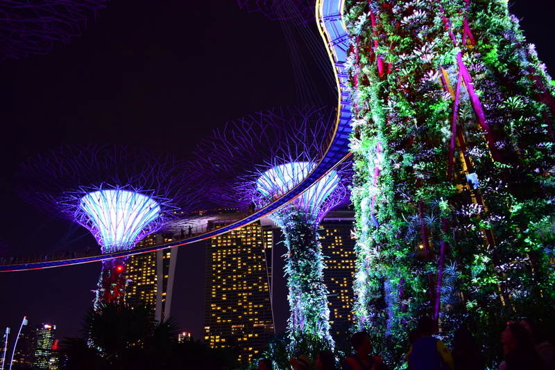 Singapore Gardens by the Bay Light Show