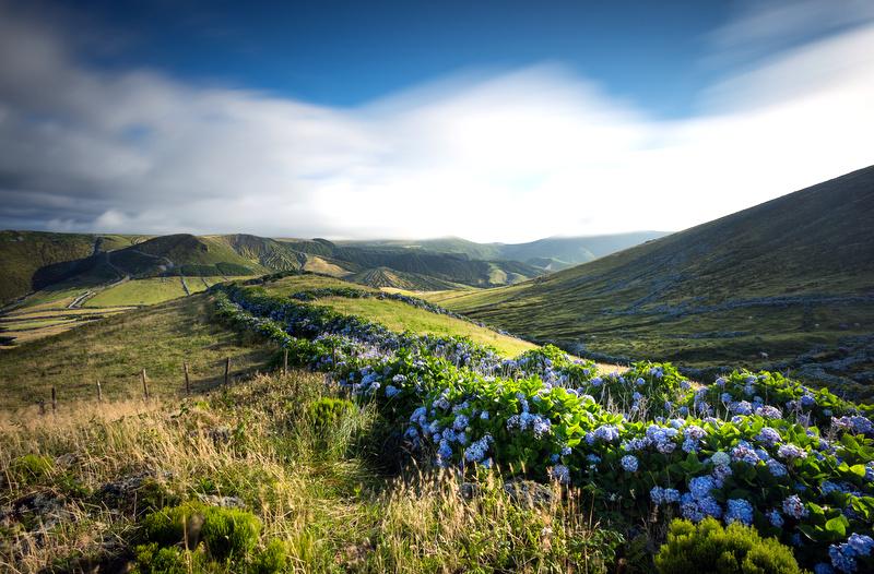Flores Island   Azores