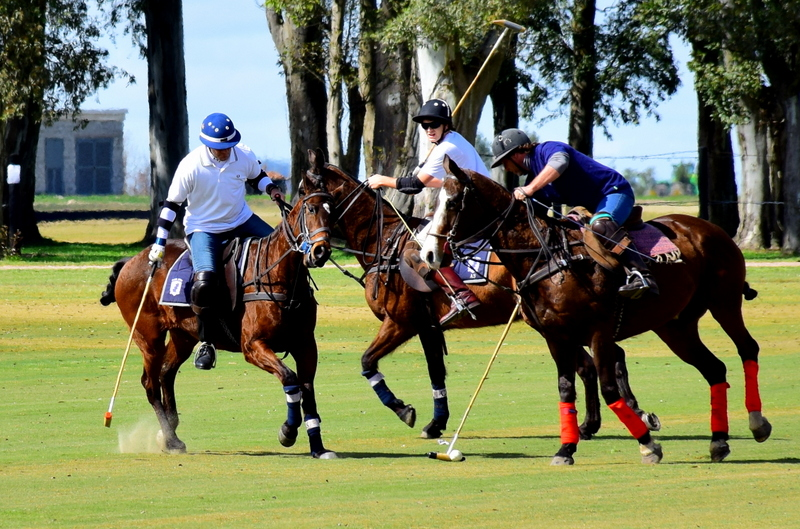 Pueso Viejo Estancia Polo Club