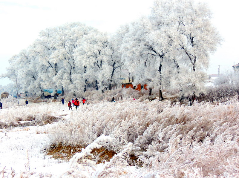 Wusong Island
