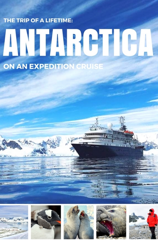 The trip of a lifetime traveling to antarctica on an for Can you go to antarctica