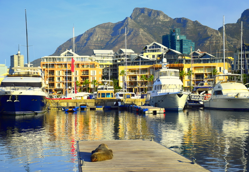 If you want all the luxury of a hotel but in a more unusual setting, rent a house boat in South Africa