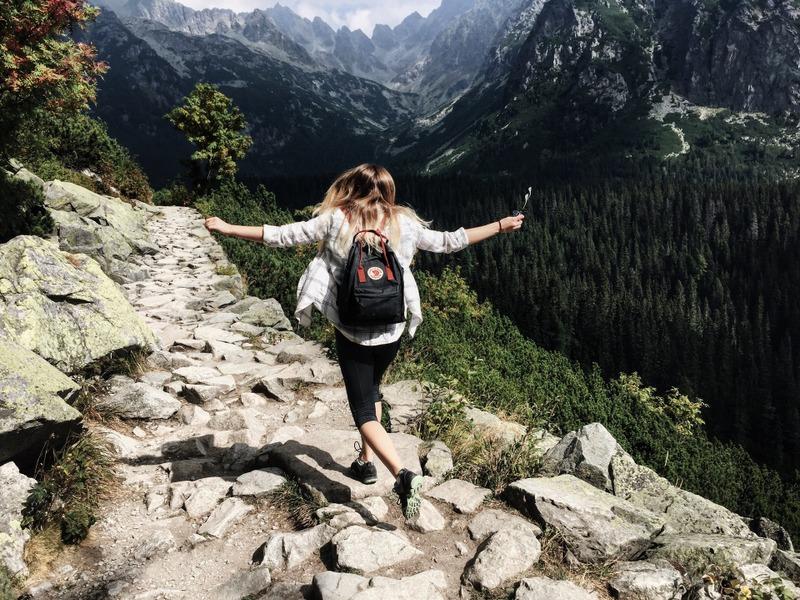 Traveler hiking royalty Free