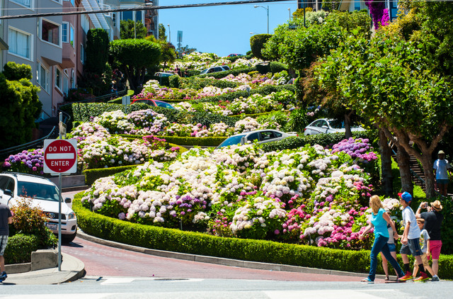 Stop at Lombard Street to watch as bikes and cars navigate the world's most crooked street.