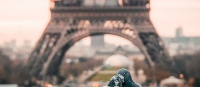 How to Live Like a Parisian: Even if You're Only Visiting For a Few Days