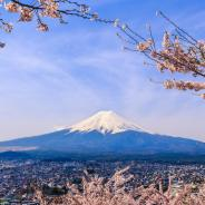 Why Hanami Season is the Best Time to Visit Japan