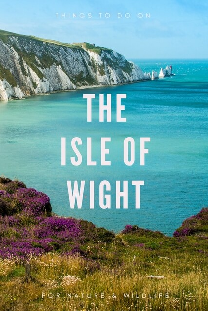 Isle of wight walking festival speed dating