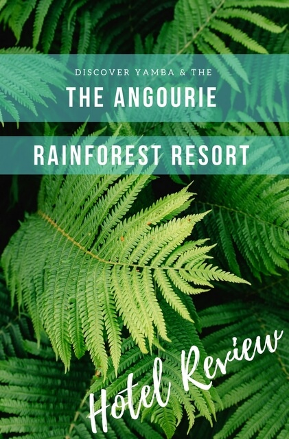 Wrapped within 600 hectares of rainforest Angourie Rainforest Resort is fast becoming a hotspot for travellers to northern NSW.