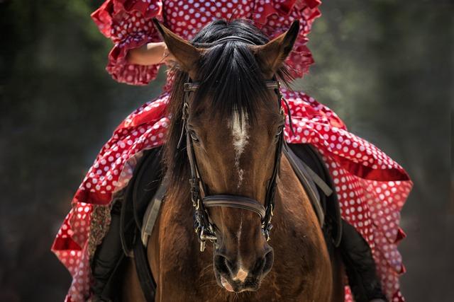 Horse riding RF