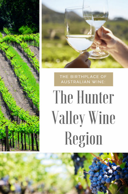 While Australia's largest wine regions are found in SA & Victoria, just North of Sydney lies the beautiful Hunter Valley; the birthplace of Australian wine.